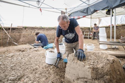 Die letzten Überreste der interessanten Kelten-Bodenschicht werden abgetragen. (Bild: Pius Amrein (Egolzwil, 17. Oktober))