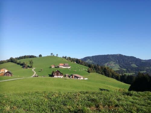 Blick auf Hofstetten. Der Wanderweg führt am Bauernhaus in der Mitte vorbei nach rechts zum Wald. (Bild: Marlen Hämmerli)