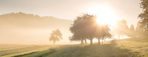 Nebelstimmung bei Sonnenaufgang. (Bild: Priska Ziswiler-Heller (Ettiswil, 12. Oktober 2018))
