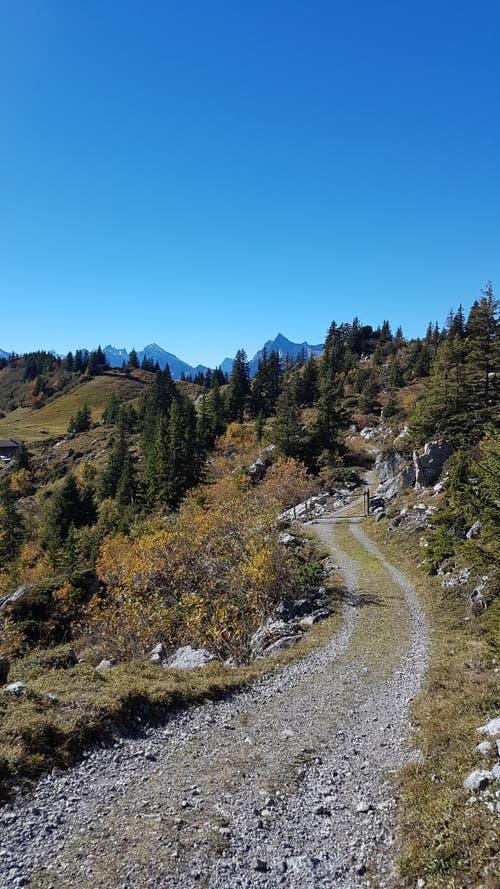 Herrliche Herbstwanderung mit allen Facetten des Herbstes! (Bild: Karin Gasser, 13. Oktober 2018))