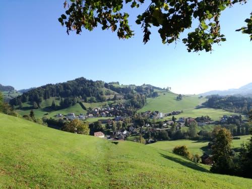 Auf diesem Pfad wandern auch Jakobsweg-Pilger. Geradeaus liegt St.Peterzell. (Bild: Marlen Hämmerli)