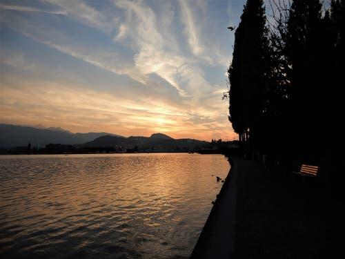 Was so eine wunderschöne Sonnenuntergangs-Stimmung alles bewirken kann; nur für Sekunden erscheint diese Bank im Hochglanz. Fotografiert am Mittwoch am Quai in Luzern. (Bild: Margrith Imhof-Röthlin (Luzern, 18. Oktober 2018))
