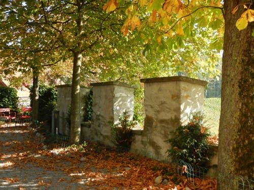 Goldener Oktober auf der Schlossterrasse auf der Heidegg. (Gerhard Estermann (Gelfingen, 17. Oktober 2018))