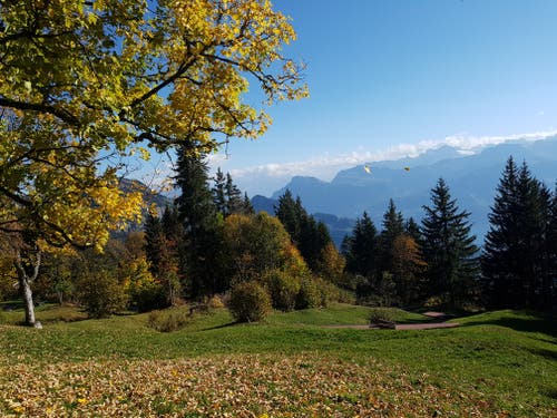 Blick vom Panoramaweg auf der Rigi. (Claude Veltin (Rigi Chänzeli, 16. Oktober 2018))