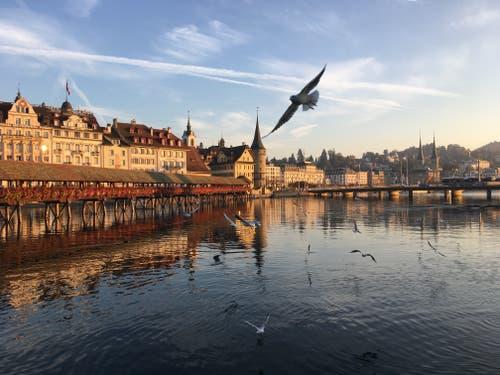 Kappelbrücke im herbstlichen Licht. (Bild: Stefanie Müller (Luzern, 17. Oktober 2018))