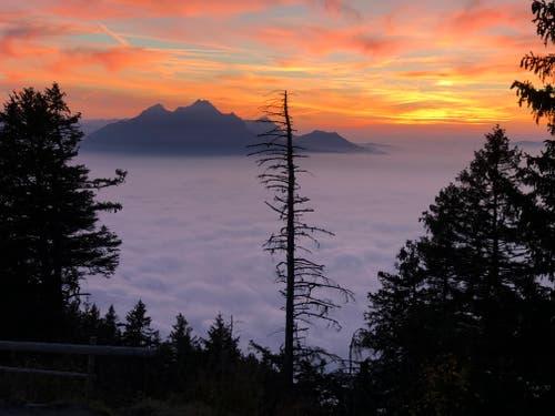 Rigi-Staffelhöhe. Sonnenuntergang und Nebelmeer. (Bild: Bruno Albisser)