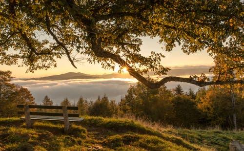 Sonnenaufgang auf dem Zugerberg II. (Bild: Daniel Hegglin)
