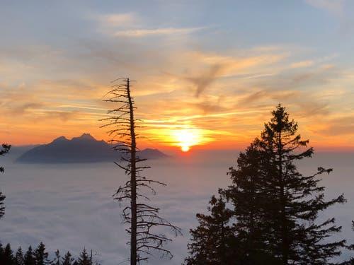 Spektakulärer Sonnenuntergang auf Rigi Staffelhöhe. (Bild: Lisbeth Albisser)