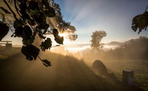 Sonnenaufgang auf dem Zugerberg III. (Bild: Daniel Hegglin)