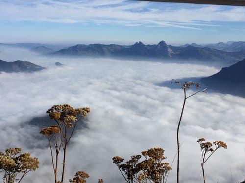 Herrliches Nebelmeer mit Sicht auf die Mythen. (Bild: Esther Macchi (Emmetten, 19. Oktober 2018))