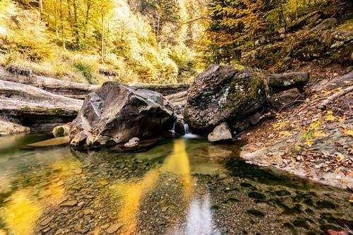 Herbststimmung am Bach. (Bild: Hardy Konzelmann (Obernau, 18. Oktober 2018))
