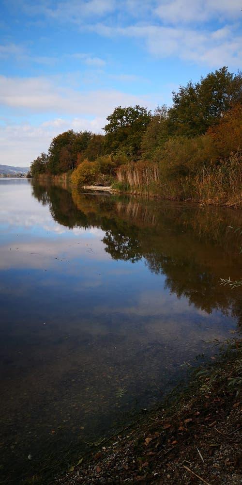Schöne Herbststimmung am Baldeggersee. (Bild: Alois Näf (24. Oktober 2018))