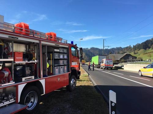 Die Feuerwehr, mehrere Krankenwagen und die Rega waren vor Ort. (Bild: Giulia Jung / Radio Pilatus)