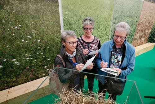 Hanni Blättler, Marlis Pellanda und Beatrice Hurni (von links) füllen einen Wettbewerb am Stand des Zuger Bauernverbands aus. (Bild: Stefan Kaiser (Zug, 23.Oktober 2018))