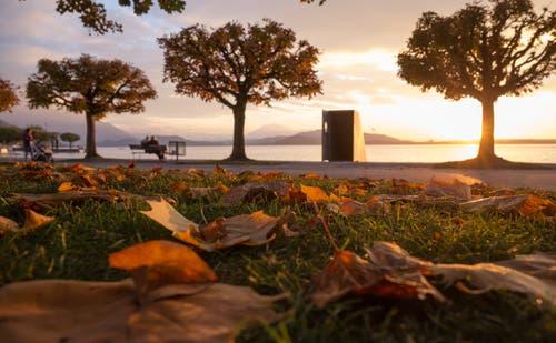 Sonnenuntergang am Zugersee. (Bild: Daniel Hegglin (Zug, 24. Oktober 2018))