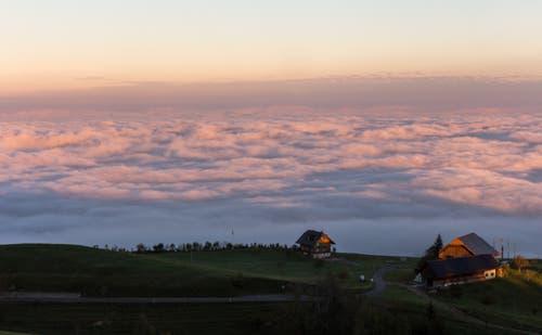 Morgenrot über dem Nebelmeer. Blick auf Zug. (Bild: Daniel Hegglin)