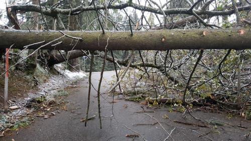 Versperrte Strasse in Hemberg. (Bild: BRK-News)