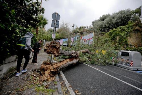 Auch in Napoli blockierten Bäume Strassen. (Bild: EPA/CIRO FUSCO, 29. Oktober 2018)