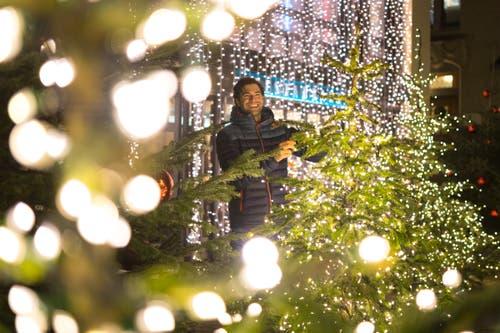 Olympiasieger Mario Gyr inmitten von Weihnachtbäumen und Beleuchtungen (Bild: Roger Grütter)