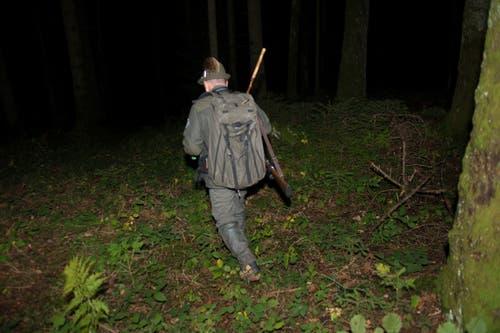 Jäger Peter Küenzi stapft in den dunklen Morgenwald.