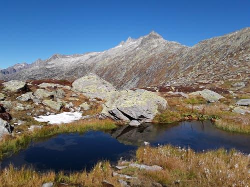 Wunderschöne Natur, aufgenommen etwas unterhalb der Grimselpasshöhe. (Bild: Bruno Ringgenberg (5. Oktober 2018))