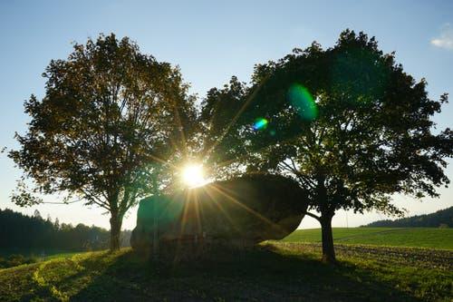 Sonnenuntergang beim Findling Honigstein. (Bild: Isidor Rösch (Roggliswil, 7. Oktober 2018))