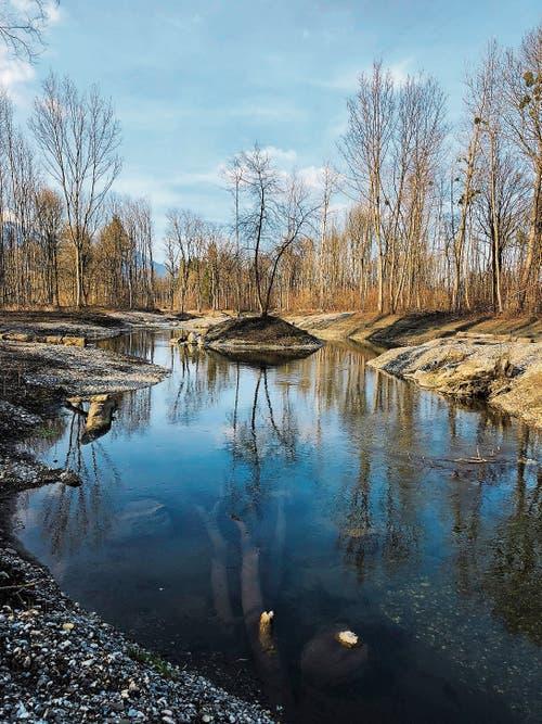 Neugeschaffene Landschaft am renaturierten Abschnitt des Werdenberger Binnenkanals.