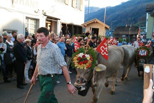 Ein Senten Vieh läuft über den Dorfplatz.