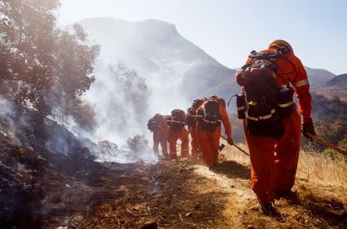 Feuerwehrmänner beim Ersticken von Glutherden und mähen von Brandschneisen im Hügelland im westlichen Kalifornien. (Bild: Eugene Garcia, 11. November 2018)