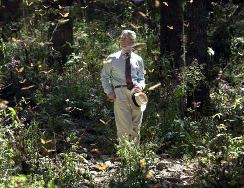 Charles besucht eine Schmetterlings-Farm in Chincua in Mexico im Jahr 2002. Er bereiste damals in fünf Tagen Mexiko und Brasilien. (Bild: Archiv/KEYSTONE/AP Photo/PA/Toby Melville)