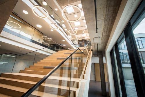 Eingangstreppe zum Empfang am neuen Hauptsitz von Lidl Schweiz (Bild: Reto Martin)