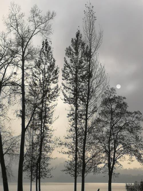 Die Sonne kam nicht ganz durch denn Nebel in Luzern. (Bild: Christian Engler)