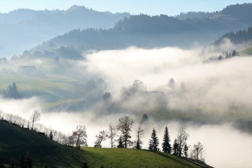 Durch das Napfgebiet ziehen Nebelschwaden. (Bild: Irene Wanner, 25. November 2018)