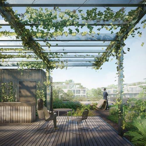 Das Quartier soll laut laut der Migros ökologisch vorbildlich werden und Platz haben für die unterschiedlichsten Wohnformen.