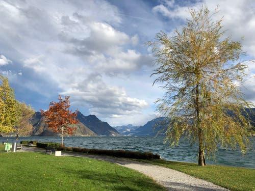Herbststimmung im Buochser Seebecken. (Bild: Edith Pargger-Amstutz (Buochs, 6. November 2018))