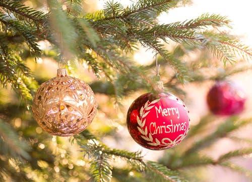 Merry Christmas! (Bild: Priska Ziswiler (Ettiswil, 13. Dezember 2018))