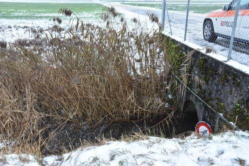 Buochs / Ennetbürgen - 16. DezemberIn der Nacht auf Sonntag haben Vandalen ein Schacht entfernt, Inselleuchtpfosten umgerissen und verschiedene Signale ausgerissen. Die Polizei sucht Zeugen (041 618 44 66)