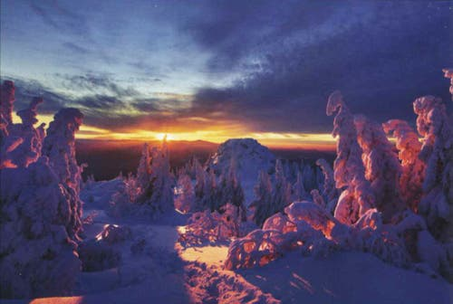 In Kalenderbildern zeigen sich unsere Bedürfnisse, eine Auswahl an Sujets des kommenden Jahres: Sehnsucht Wald (Geo-Verlag).