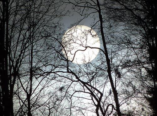 Scheint hier nun die Sonne oder leuchtet schon der Vollmond vom 31. Januar? Es ist 15:20 Uhr. (Bild: Josef Lustenberger)
