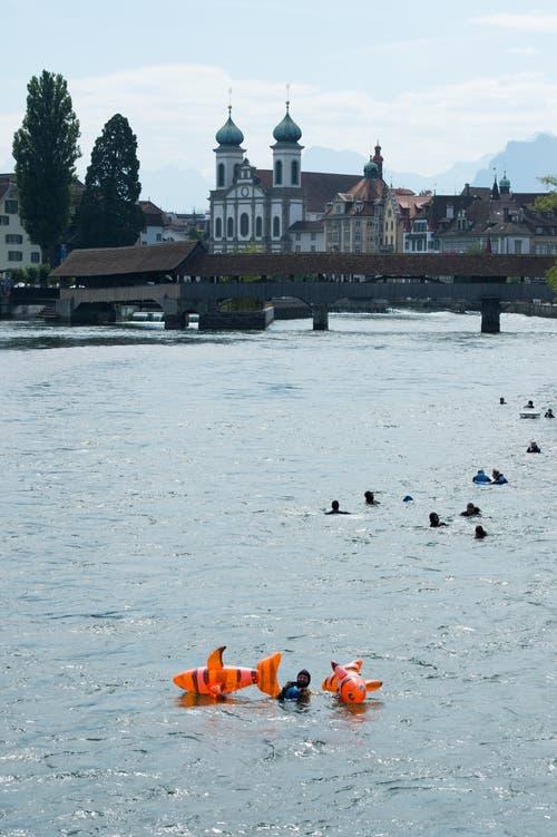 Reussschwimmen (Bild: Archiv Neue LZ)