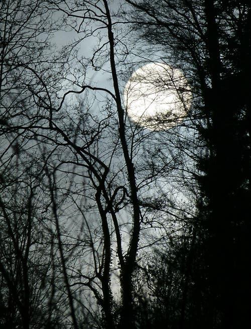 Bevor der Mond aufsteigt, muss die Sonne , die sich durch den Nebel und die Wolken kämpft, untergehen. (Bild: Josef Lustenberger)