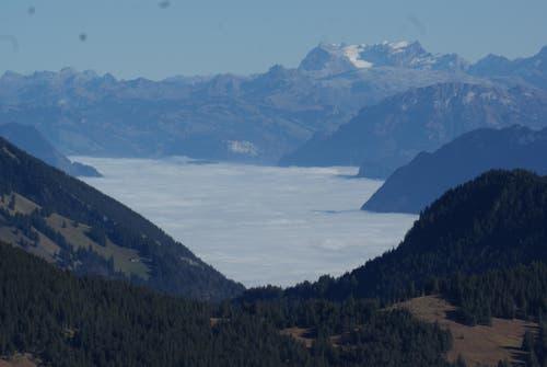 Allerheiligen Blick vom Schimbrig ins Obwaldnerland, das unter einer dicken Nebelschicht liegt. (Bild: Hanny Wirz)
