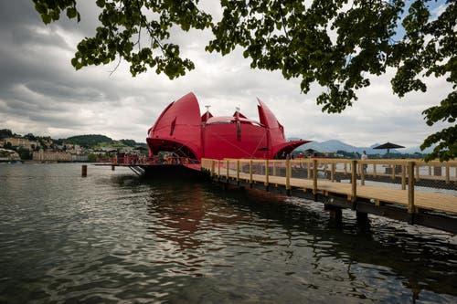 30. Mai: Die Seerose, die dem «Gästival» als Bühne zahlreicher Produktionen dient, hat erstmals in Luzern ihre Türen und Blütenblätter geöffnet. (Bild: Roger Grütter / Neue LZ)