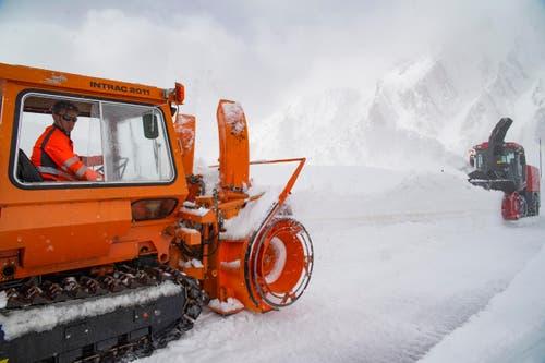 Der Job ist nicht ungefährlich, denn die Lawinengefahr ist nach dem Neuschnee der vergangenen Tage gross. (Bild: Keystone / Benedetto Galli)