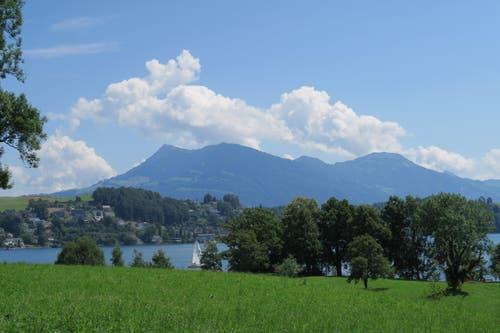 ... gelangt zu dieser tollen Aussicht: Die Rigi thront hoch oben über dem Vierwaldstättersee. (Bild: Stefanie Nopper / Luzernerzeitung.ch)