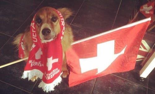 Bei den Schweizer Spielen komme ich nicht auf den Hund! (Bild: Peter Burri, Oberrüti)