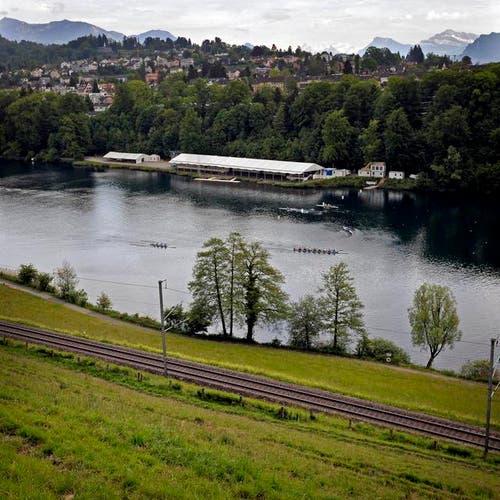 Training im Rotsee: die Infrastrukturen sind veraltet. (Bild: Pius Amrein / Neue LZ)