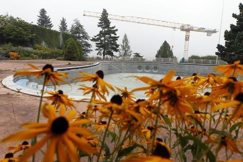 Der alte Pool aus den 50er-Jahren bleibt erhalten. (Bild: Keystone)