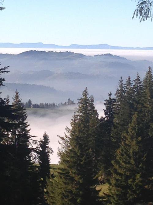 Ueber dem Nebel. Ausblick von der Aelpiliegg(Finsterwald) Im Hintergrund der Jura. (Bild: Meyer Fredi)