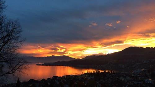 Beim Schulhaus Richterswil wurde das Foto aufgenommen. Darauf zu sehen ist Richterswil und der Zürichsee. (Bild: Sarah Luz)